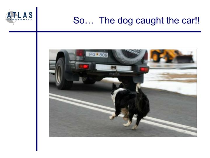 So…  The dog caught the car!!