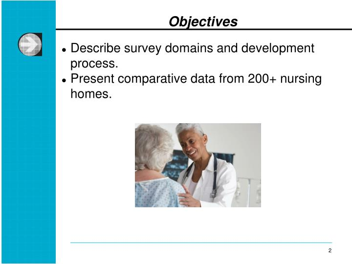 Describe survey domains and development process.