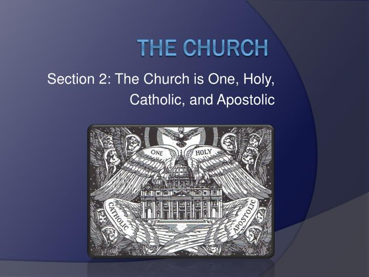 section 2 the church is one holy catholic and apostolic n.