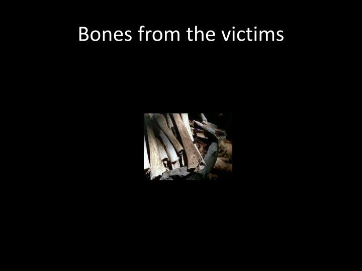 Bones from the victims