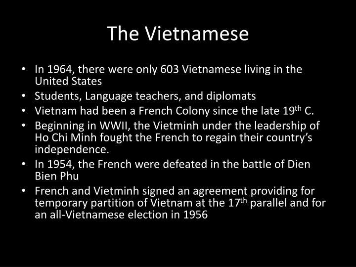 The vietnamese