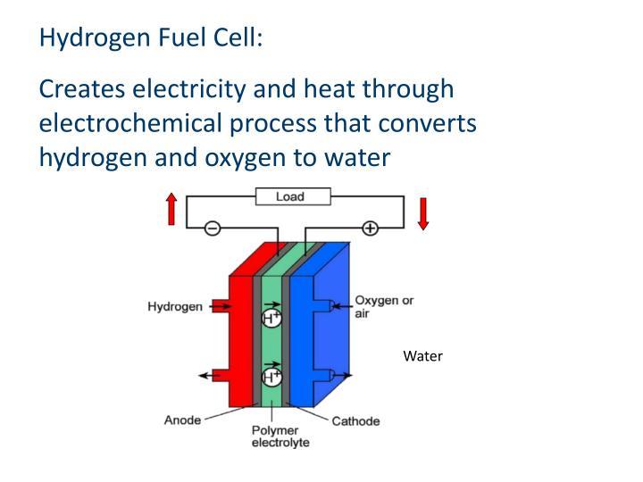 Hydrogen Fuel Cell:
