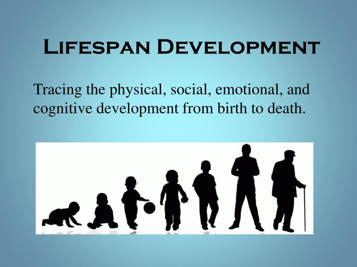 lifespan development in late adults essay Early and middle adulthood essay sample although the theory of development by erik erikson maintained that humans develop in psychosocial stages, it is the psychological adjustments people undertake in regard to lifestyle and aging that mark significant areas of development.