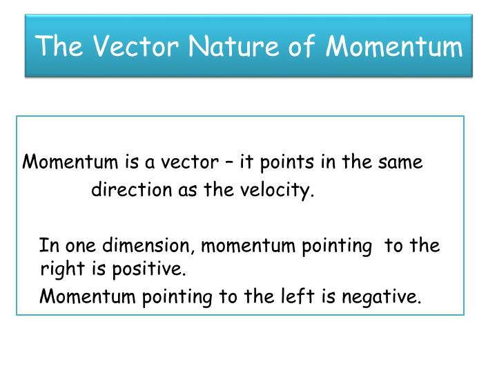 The Vector Nature of Momentum