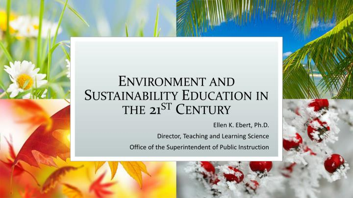 environment and sustainability education in the 21 st century n.