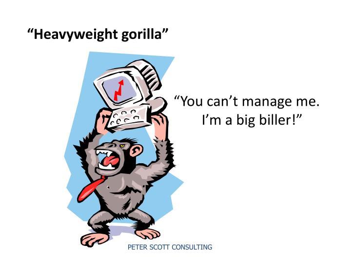 """""""Heavyweight gorilla"""""""