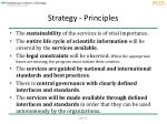 strategy principles1