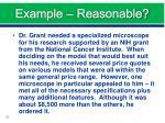 example reasonable