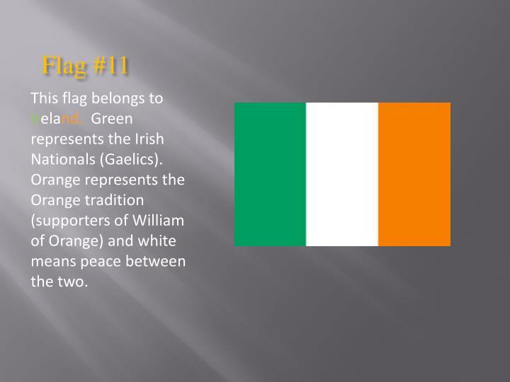 Flag #11