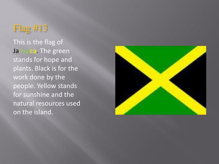 Flag #13