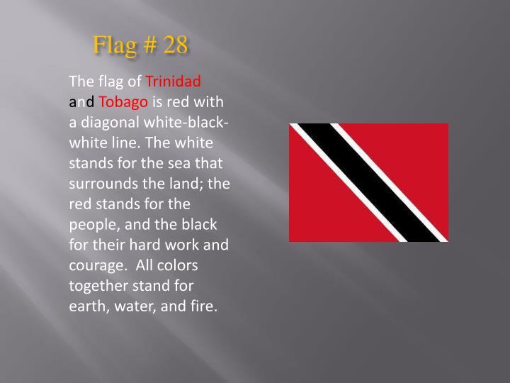 Flag # 28