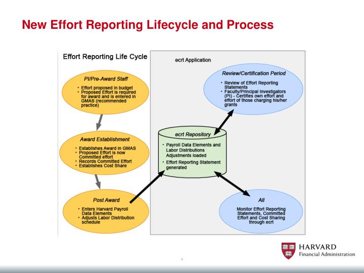 New Effort Reporting Lifecycle and Process