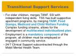 transitional support services1