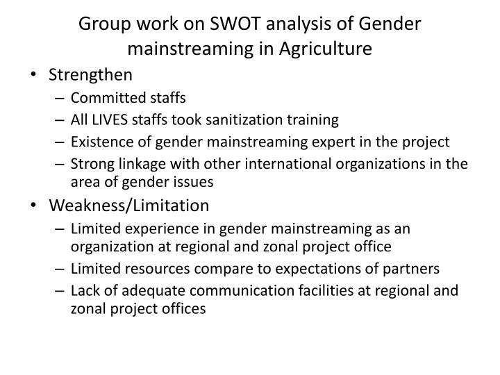 Group work on SWOT analysis of Gender mainstreaming in Agriculture