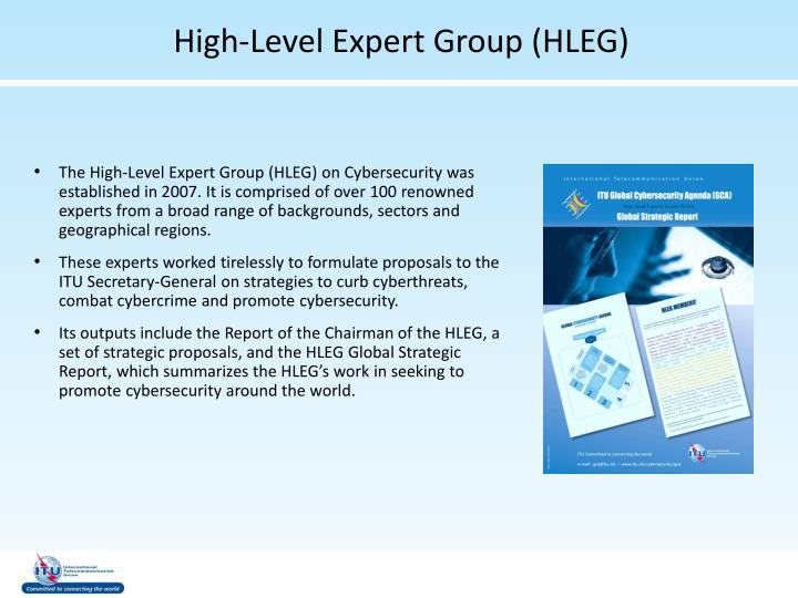 High-Level Expert Group (HLEG)