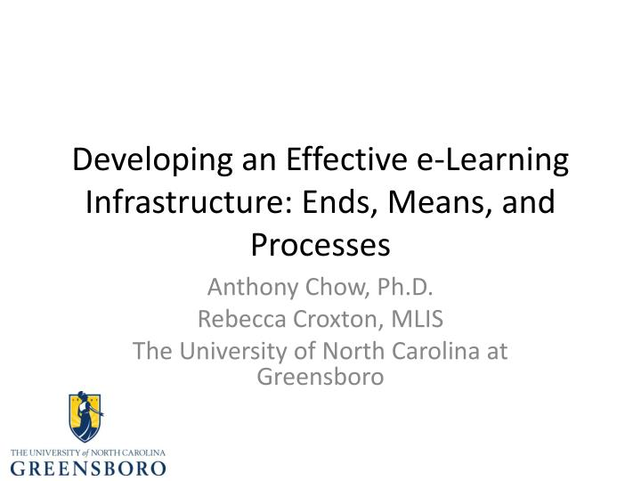 developing an effective e learning infrastructure ends means and processes n.