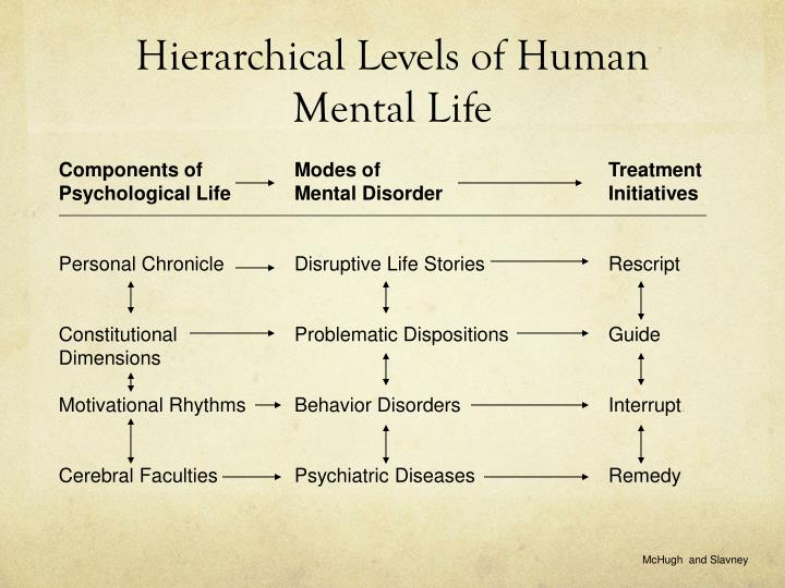 Hierarchical levels of human mental life