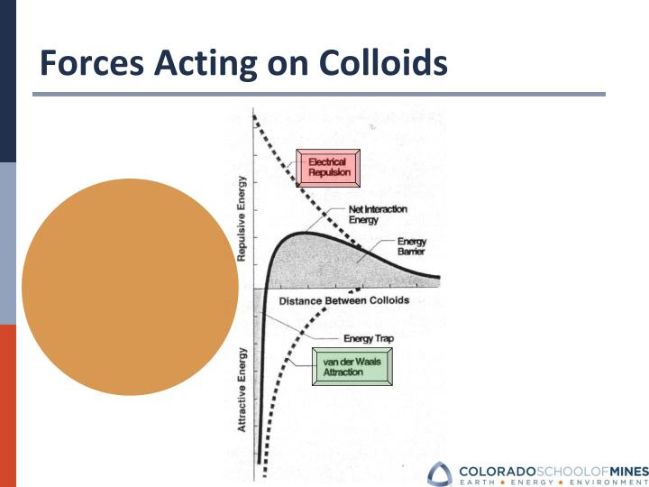 Forces Acting on Colloids