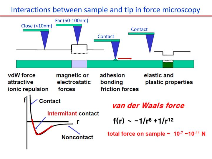 Interactions between sample and tip in force microscopy