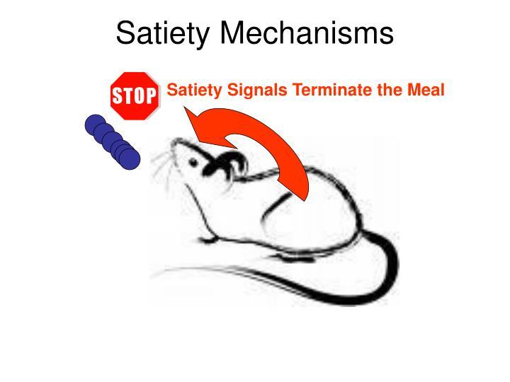 Satiety Mechanisms