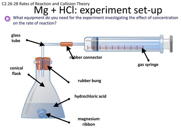 mg hcl reaction