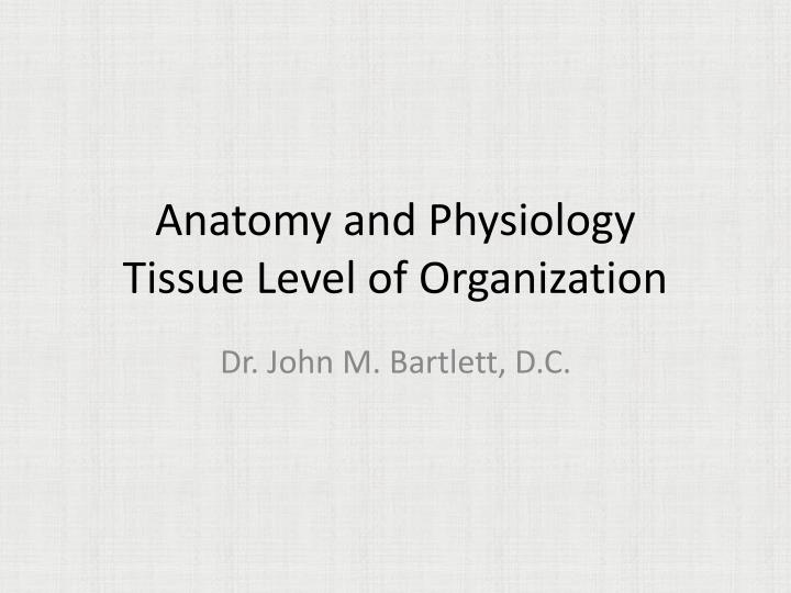 PPT - Anatomy and Physiology Tissue Level of Organization PowerPoint ...