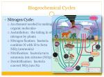 biogeochemical cycles2
