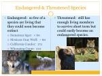 endangered threatened species