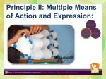 principle ii multiple means of action and expression