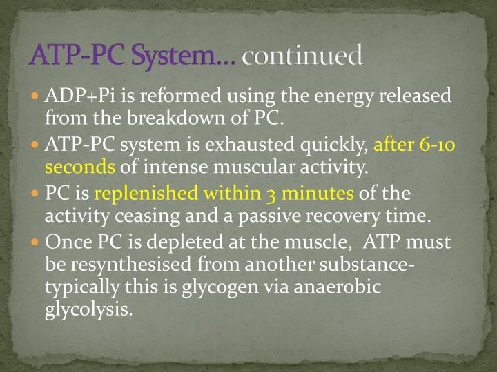 ATP-PC System…