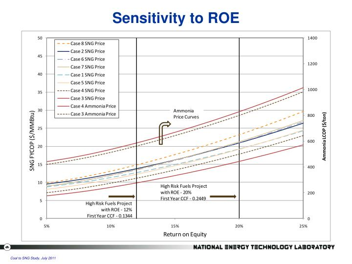 Sensitivity to ROE