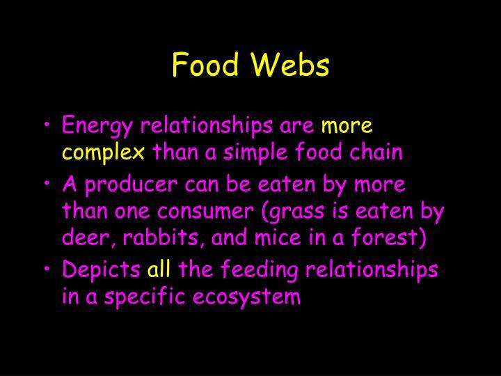 Food Webs