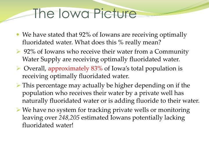 The Iowa Picture