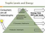 trophic levels and energy