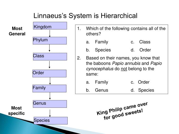 Linnaeus's System is Hierarchical