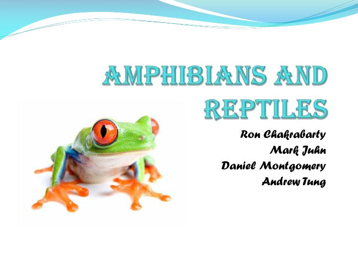 amphibians and reptiles n.