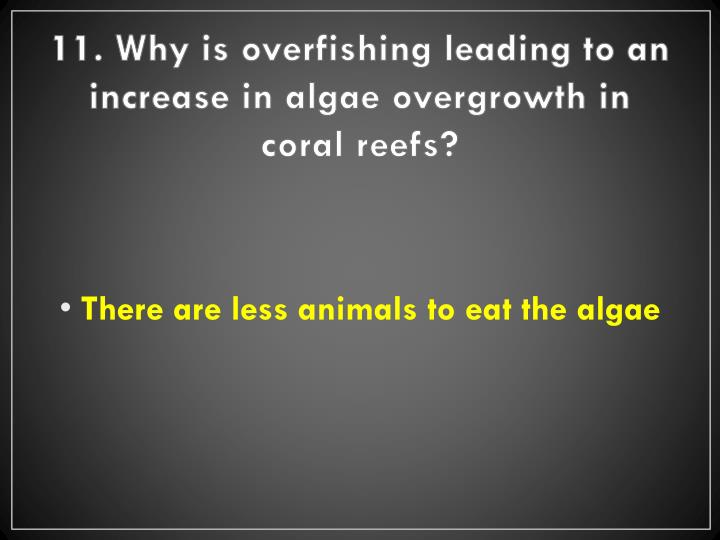 11. Why is overfishing leading to an increase in algae overgrowth in coral reefs?