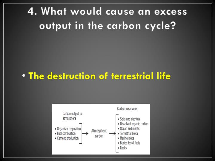 4. What would cause an excess output in the carbon cycle?