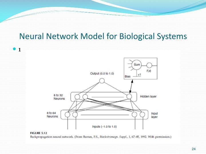 Neural Network Model for Biological Systems