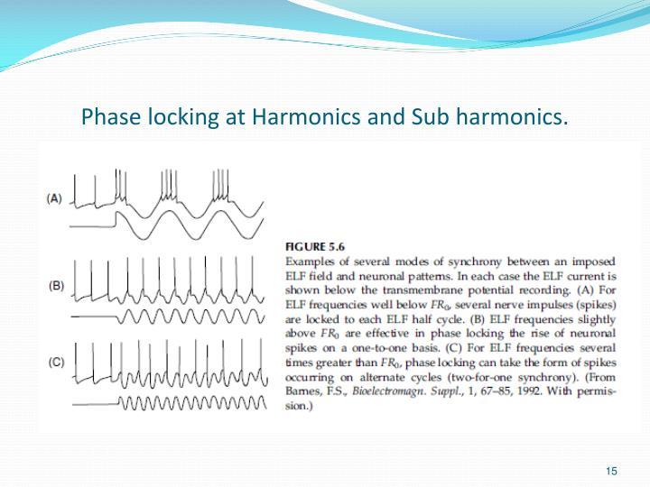 Phase locking at Harmonics and Sub harmonics.