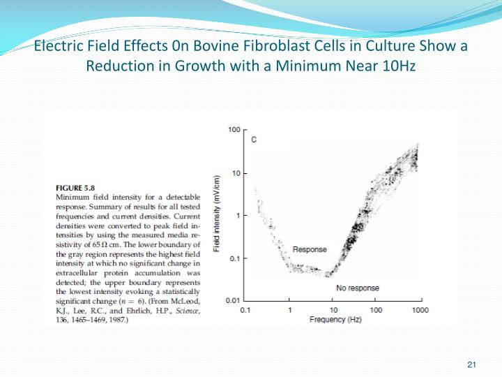 Electric Field Effects 0n Bovine Fibroblast Cells in Culture Show a Reduction in Growth with a Minimum Near 10Hz