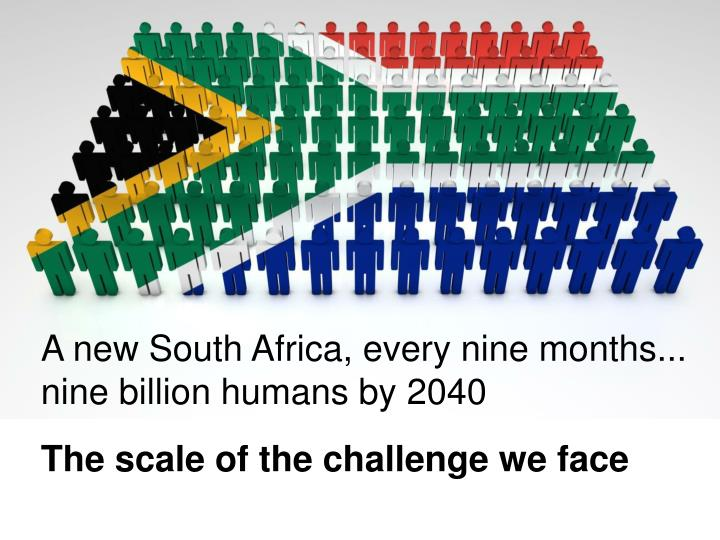 A new South Africa, every nine months...