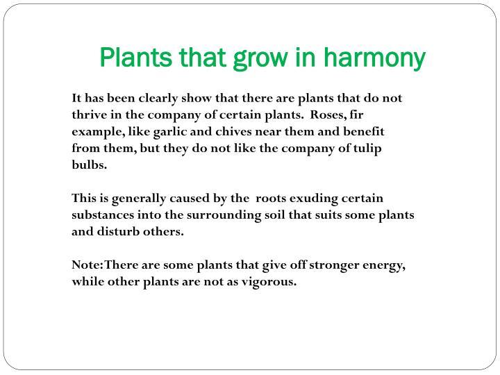 Plants that grow in harmony