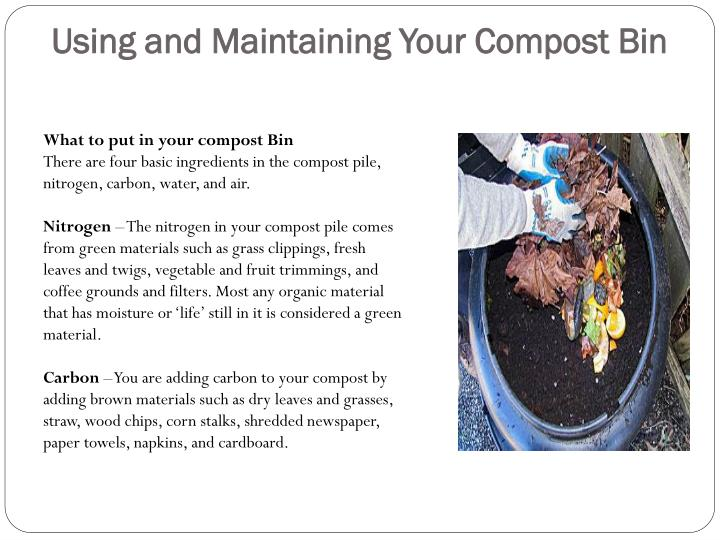 Using and Maintaining Your Compost Bin