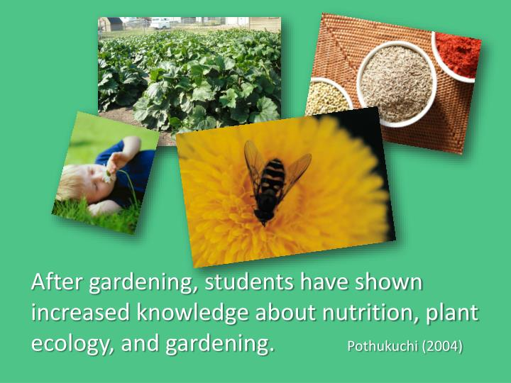 After gardening, students have shown increased knowledge about nutrition, plant ecology, and gardening.