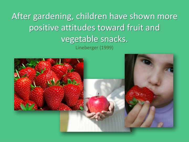 After gardening, children have shown more positive attitudes toward fruit and vegetable snacks.