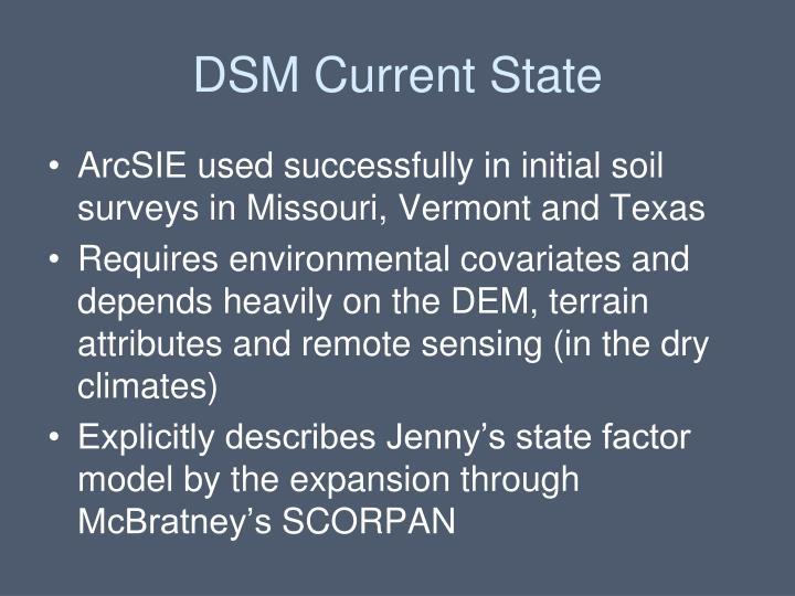 DSM Current State