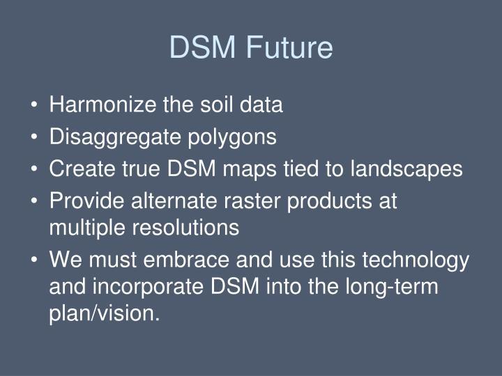 DSM Future