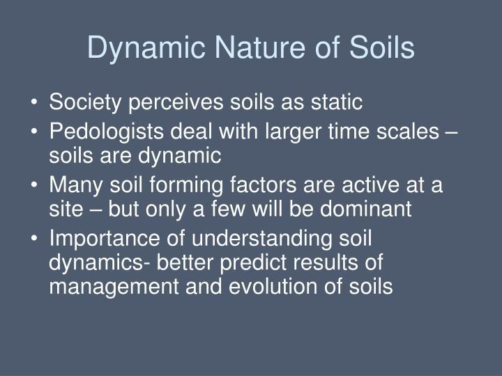Dynamic Nature of Soils