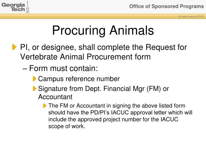 Procuring Animals